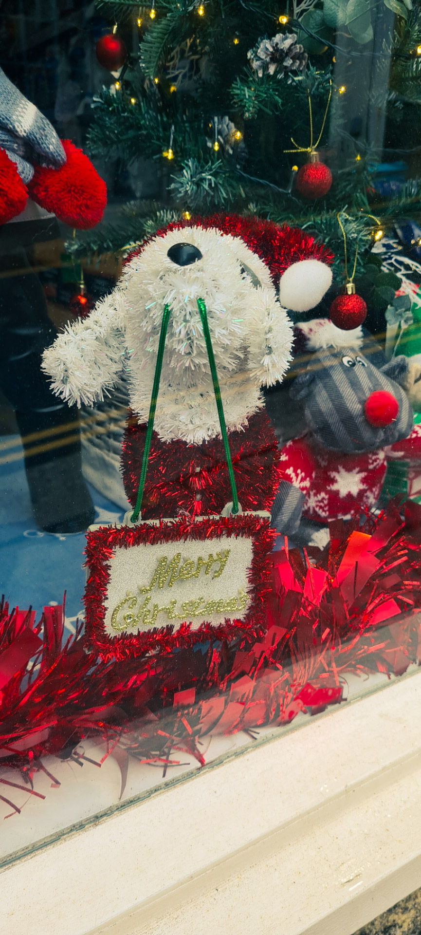 St Ives In December - Shop Window competition
