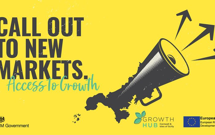 Growth Hub Access to Growth Fund